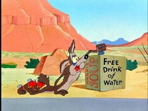 coyote fail